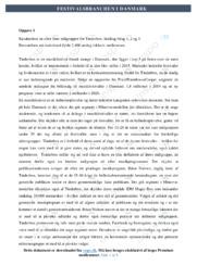 Tinderbox | Målgruppekarakteristik | 10 i karakter