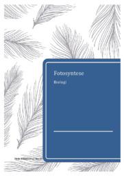 Fotosyntese | Biologirapport | 12 i karakter