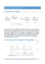 Laktoseintolerant | Bioteknologi | 10 i karakter