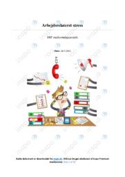 Arbejdsrelateret stress | SRP | 12 i karakter