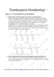 Cyanobakterier og bioethanol   Terminsprøve