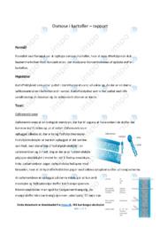 Osmose i kartofler   Rapport   10 i karakter