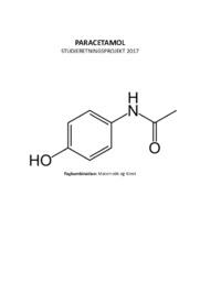 Paracetamol studieretningsprojekt   AT