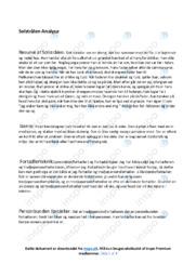 Solstrålen   Analyse   Juliane Preisler   10 i Karakter