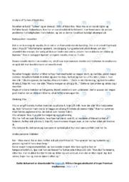 Tyrken   Analyse   Niels Hav   10 i Karakter
