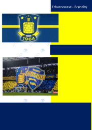 Erhvervscase | Brøndby | 10 i karakter