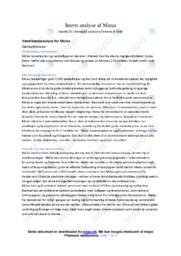 Intern analyse af Matas | VØ opgave | 10 i karakter