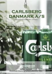 Virksomhedsanalyse af Carlsberg | VØ | 10 i karakter