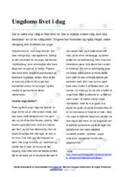 Ungdoms livet i dag   Dansk Essay   12 i Karakter