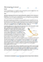 Mikroskopering af ornesæd   Biologirapport   10 i karakter