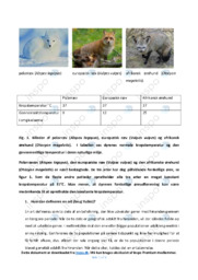 Artsdannelse hos ræve   Rapport   10 i karakter