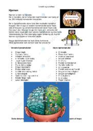 Hjernen | Opgave | 10 i karakter