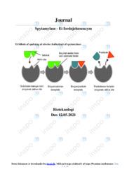Spytamylase | Rapport | 10 i karakter