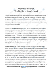 'The Sin Bin or Lucy's Heart'   Analytical essay