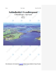 Saltindholdet i Svendborgsund   Kemirapport   10 i karakter