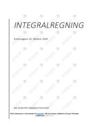 Integralregning | Emneopgave | 10 i karakter