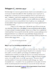 Individets ansvar | Samfundsfagsopgave | 10 i karakter