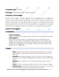 Alene og et let offer | Analyse | Steen Langstrup
