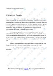 Doppler | Noter Analyse | Erlend Loe