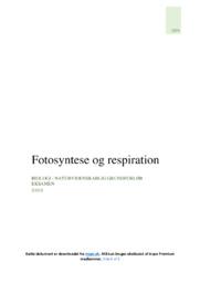 Fotosyntese og respiration | Biologi | 10 i karakter