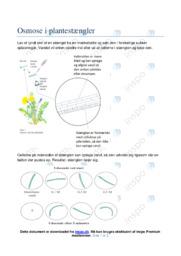 Osmose i plantestængler | Noter Biologi
