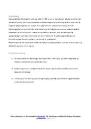 Børn og Unge i Bondefamilien   DHO   10 i Karakter