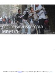 Det Arabiske Forår I Egypten | SRP | 12 i Karakter
