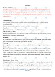 Autofiktion | Noter Analyse