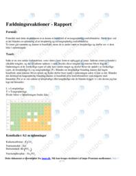 Fældningsreaktioner | Rapport | 10 i karakter
