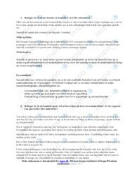 Sanistål   Virksomhedsøkonomi   10 i Karakter