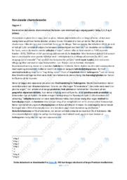 Charterbranche | Analyse | 10 i karakter