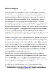 Sprogbrug i medierne | Dansk Essay | 10 i Karakter