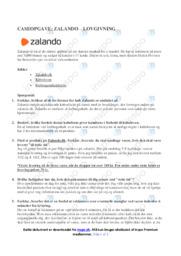 Zalando | Caseopgave | 10 i karakter