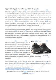 Købsadfærden ved køb af et par sko | Afsætning