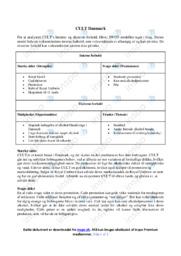 CULT Danmark   Analyse   10 i karakter