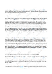 Aviser | Analyse | 10 i Karakter