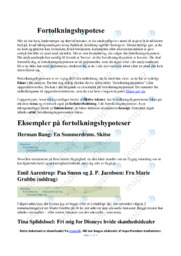 Fortolkningshypotese | Analyse | 12 i karakter