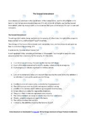 The Second Amendment   Opgave   10 i karakter