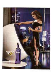 SKYY Vodka reklame   Analyse   10 i karakter