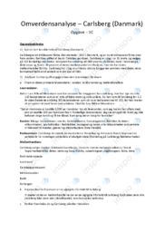 Carlsberg | Noter Afsætning Case