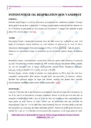 Fotosyntese & Respiration | Biologi | 10 i Karakter