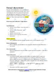 Energi i økosystemet | Noter Biologi