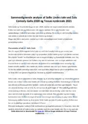 Tessas nytårstale    Opgave   10 i karakter