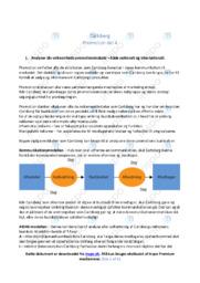 Carlsbergs promotionsindsats   Analyse