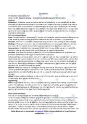 Sexismens pris | Analyse | DR | 10 i Karakter
