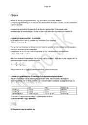 Lineær programmering – Emneopgave Matematik