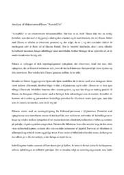 "Analyse af dokumentarfilmen ""Armadillo"""