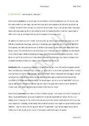 Endomondo – Marketingmix & Diskussion