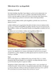 Mikroskopi af lys- og skyggeblade | Biologi