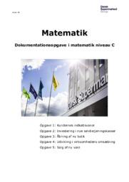 Dokumentationsopgave i Matematik niveau C